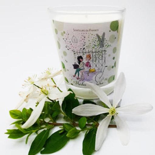 bougie parfumée jardin de Paris