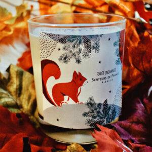 bougie parfum de Grasse ambre dans coffret Senteurs de France écureuil