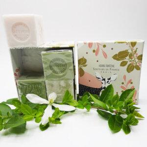 savons cubes parfumés fougère et lait d'ânesse dans coffret Senteurs de France faon
